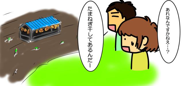 淡路島たまねぎ