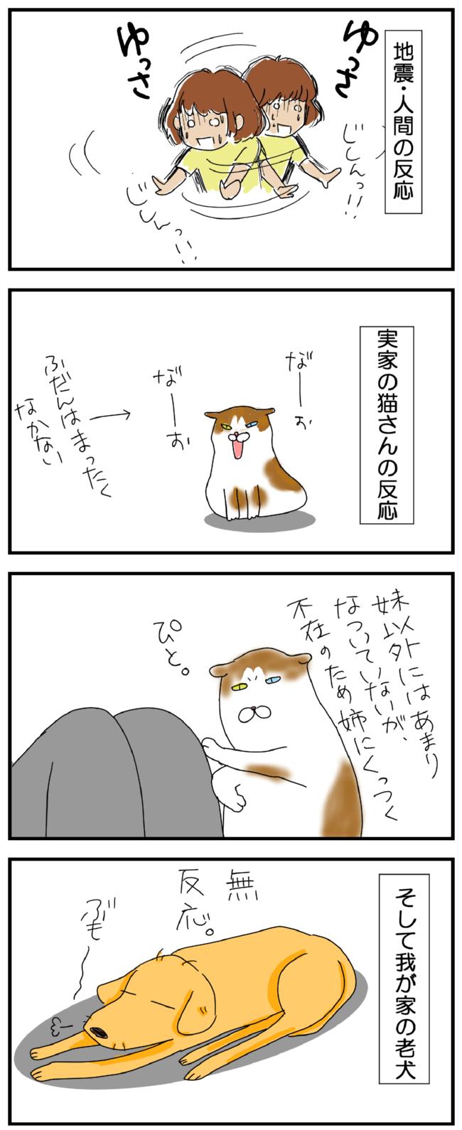 老犬さんは地震でも